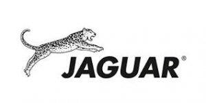 Jaguar Lockenstäbe